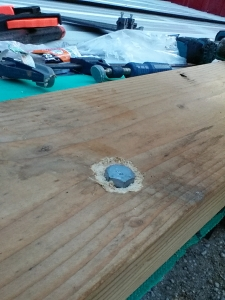 Dug out wood around the head to allow it to sit down/flush with the sill plate.